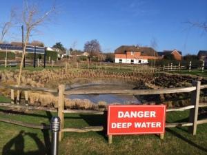 Clanfield pond 1