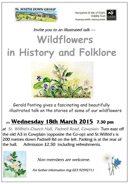 HGB wildflowers poster