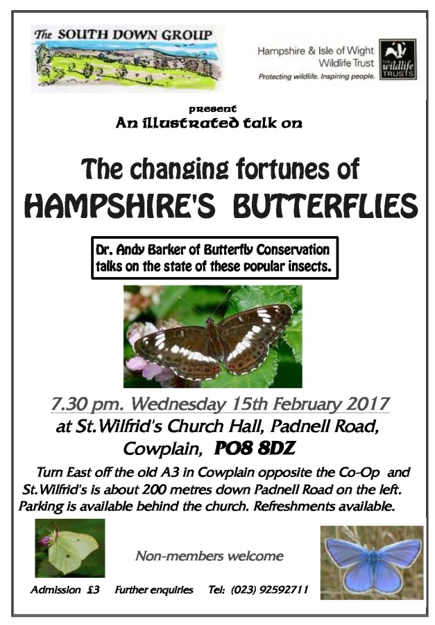 hampshires-butterflies